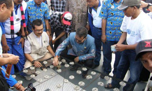 Dr. Ir. Andi Tamsil, M.Si Memberi Penjelasan kepada Gubernur Tentang Pentingnya Penyelamatan Lingkungan Laut melalui Transplantasi Karang